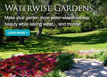 water-wise-gardens-slide-3